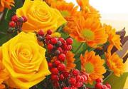 Цветы для коллеги